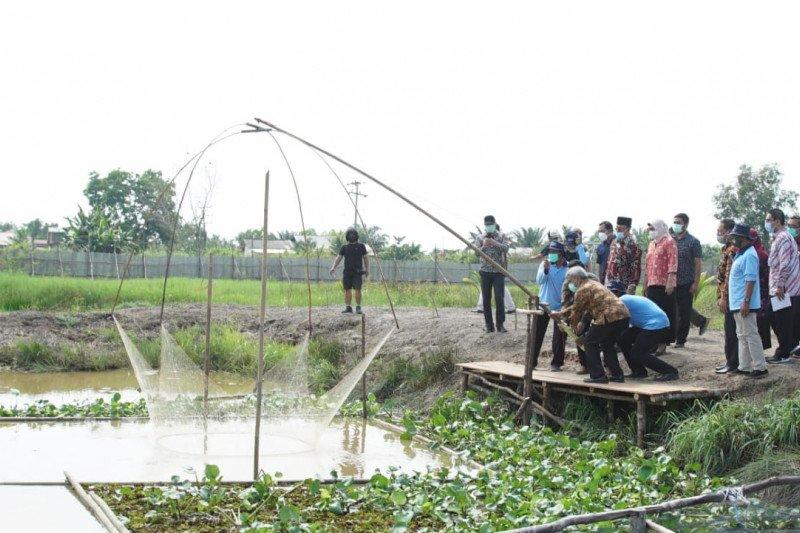 KKP dorong pemanfaatan rawa banjiran untuk tingkatkan ketahanan pangan