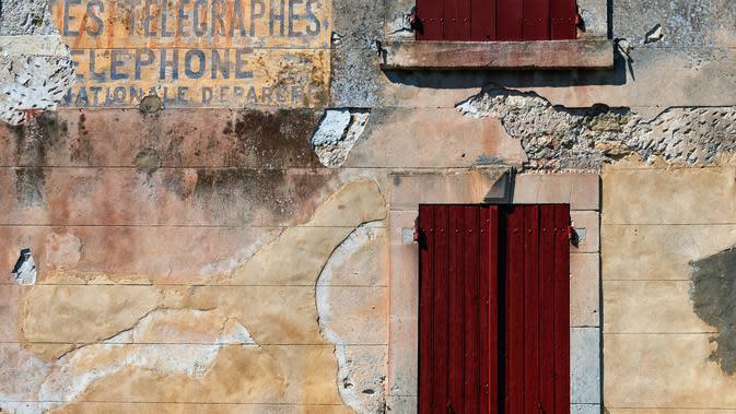 Tembok Rumah Berjamur (Sumber: Photo by James Obernesser on Unsplash)