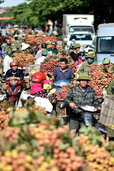 The lychee business is down in 2020 as Vietnam continues to keep its borders shut
