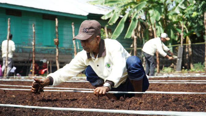 Hari Tani Nasional, Momentum Kebangkitan Pertanian Berkelanjutan di Lahan Gambut