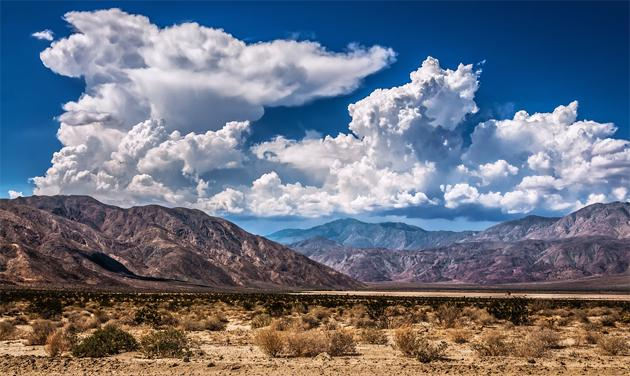 Flickr photo of the day: Desert heat