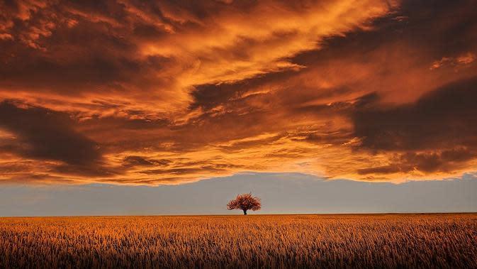 Ilustrasi awan. (Gambar oleh Bessi dari Pixabay )