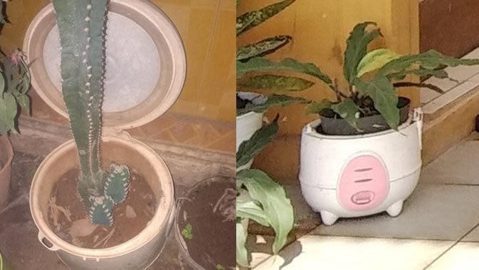 Barang Nyeleneh di Rumah (Sumber: Twitter//abidinassadzili/