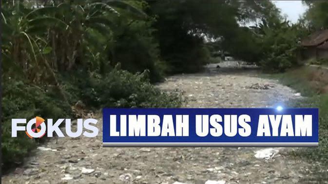 Ini Pemandangan Sungai di Mojokerto Tertutup Limbah Usus Ayam