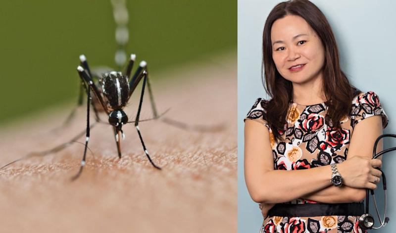 Dr Lee also told Malaysians to look out for symptoms of severe dengue as severe complications are common in those who experience a second bout of the illness. — Pictures via AFP and IMU