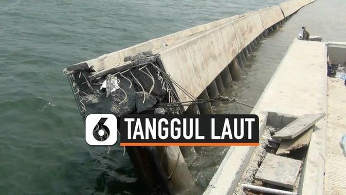 VIDEO: Tanggul Laut NCICD di Jakarta Utara Roboh Sepanjang 100 Meter