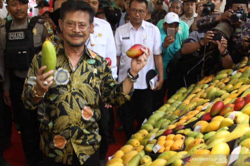 Kementerian Pertanian dorong ekspor buah Indonesia