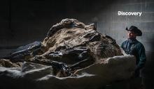 找恐龍化石當副業 可賺上百萬美金?