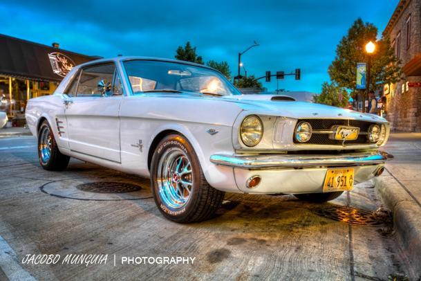 Mustang from the start: Flickr photo of the day