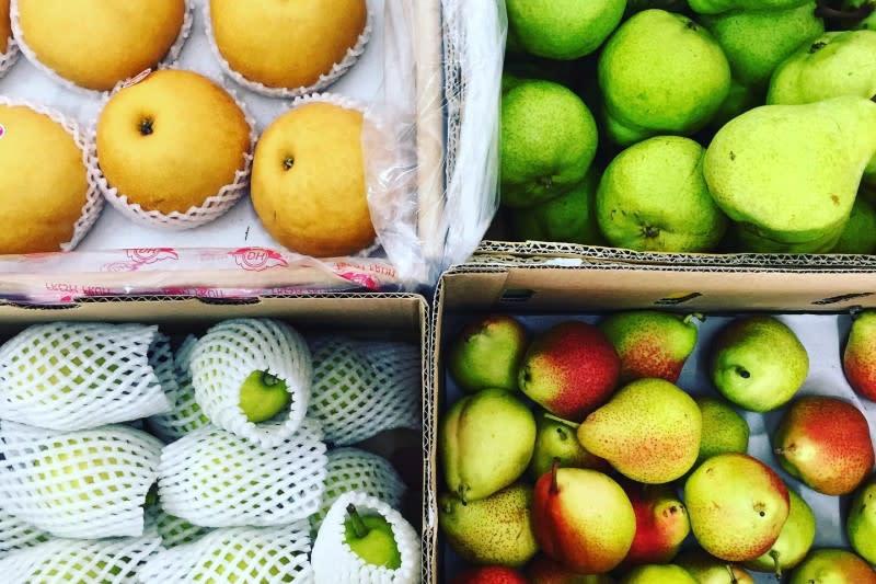 (PHOTO: Fruitwerkz)