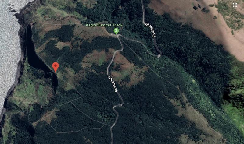A satellite image of the Te Toto Gorge area near Raglan. Source: Google