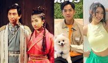 網傳TVB再翻拍《倚天屠龍記》張無忌趙敏搵佢哋飾演