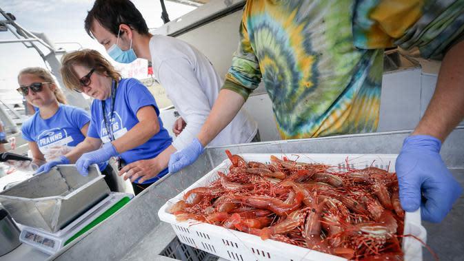 Nelayan menyiapkan udang spot segar bagi pelanggan di Steveston Fisherman's Wharf di Richmond, British Columbia, Kanada (5/6/2020). Musim udang spot tahun ini tertunda akibat kurangnya pasar selama pandemi COVID-19. (Xinhua/Liang Sen)