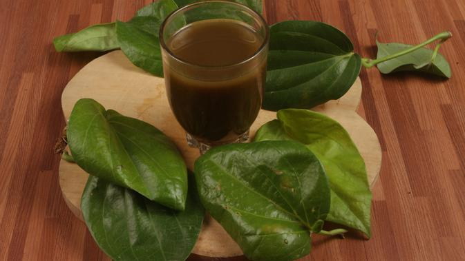ilustrasi manfaat daun suruhan yang bisa dijadikan obat herbal/Maharani afifah/shutterstock