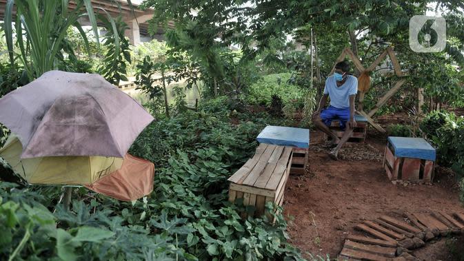 Pungki (53) beristirahat saat merawat tanaman perkebunan di kolong Tol Becakayu, Kalimalang, Jakarta, Kamis (4/6/2020). Selain tanaman, kebun yang berada di pinggir Kalimalang ini dihiasi bangku santai dan pot-pot yang terbuat dari barang bekas. (merdeka.com/Iqbal S. Nugroho)