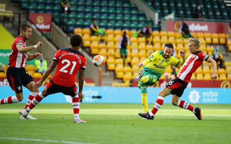 Southampton hancurkan tim papan bawah Norwich 3-0