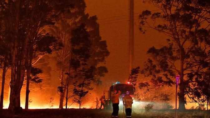 Petugas pemadam kebakaran menyemprot pohon saat berusaha memadamkan api akibat kebakaran hutan di sekitar kota Nowra, negara bagian New South Wales, Australia, Selasa (31/12/2019). (AFP/Saeed Khan)