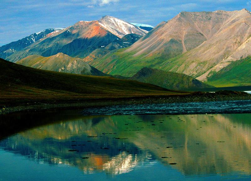 Suaka Margasatwa Nasional Arktik
