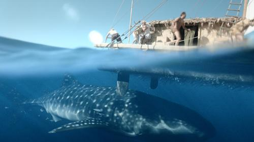 "This film image released by The Weinstein Company shows a scene from ""Kon Tiki."" (AP Photo/The Weinstein Company)"