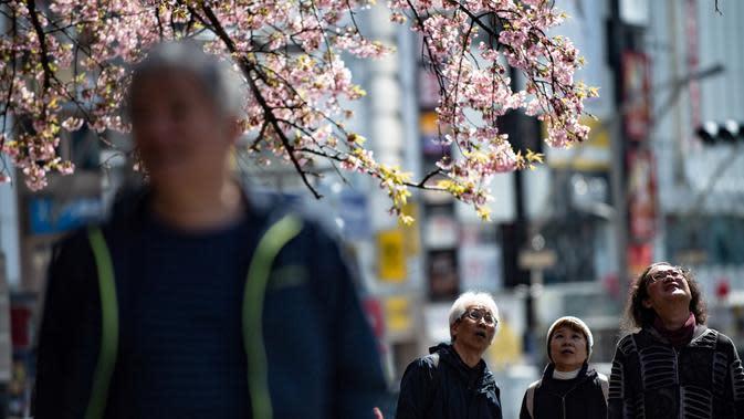 Warga melihat pohon sakura sakura di taman Ueno, Tokyo, Jepang (12/3/2020). Di tengah kekhawatiran akan penyebaran virus corona COVID-19, Ahli meteorologi memprediksi bunga sakura mulai mekar sekitar 17 Maret di Tokyo. (AFP/Philip Fong)