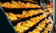 路跑吃蕉不抽筋 農委會控制種蕉