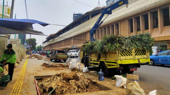 Bekas pohon-pohon besar yang ditebang di kawasan trotoar Cikini, Jakarta Pusat. Rabu (6/11/2019). (Liputan6.com/ Rizki Putra Aslendra)