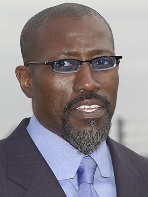 Do Your Taxes! Wesley Snipes Is Out of Jail