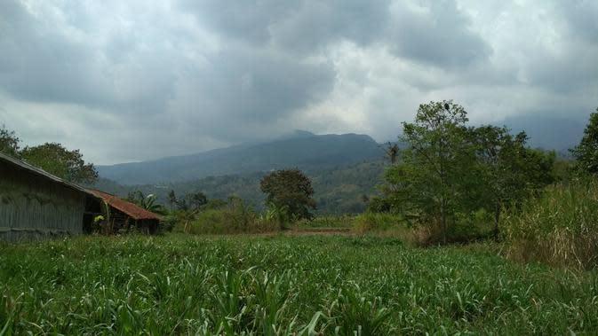 Suasana asri masih terasa di situs Leuweung Leutik Desa Cigugur Kabupaten Kuningan dan jejak peninggalan Pangeran Madrais. Foto (Liputan6.com / Panji Prayitno)