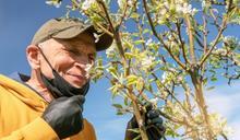 老人嗅覺下降恐致死? 研究發現:有嗅覺障礙的銀髮族死亡風險增