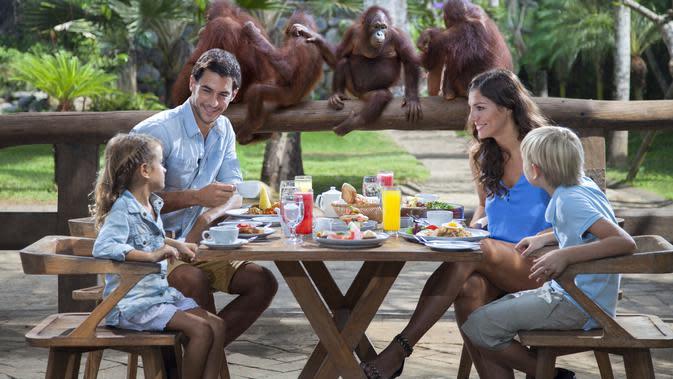 Sarapan bersama orang utan. (Foto: Dok. Bali Zoo)
