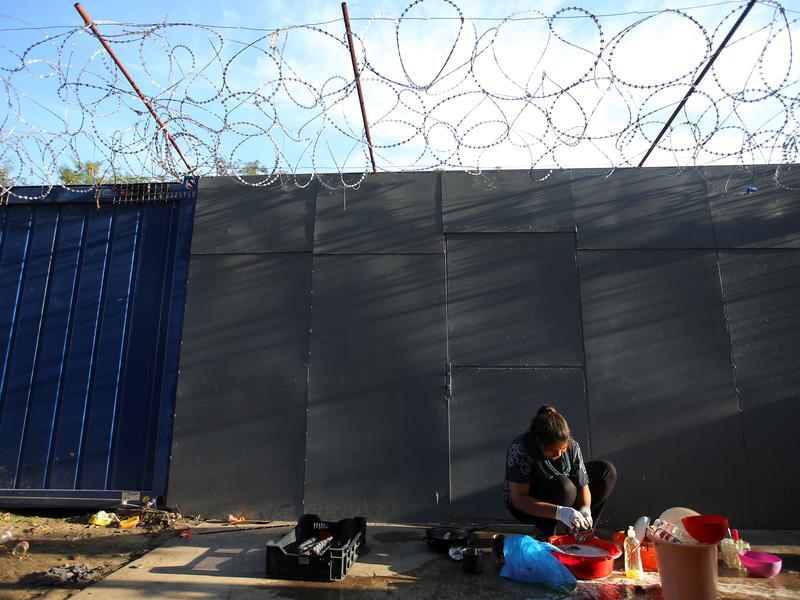 難民日通過法案 要追訴庇護難民者