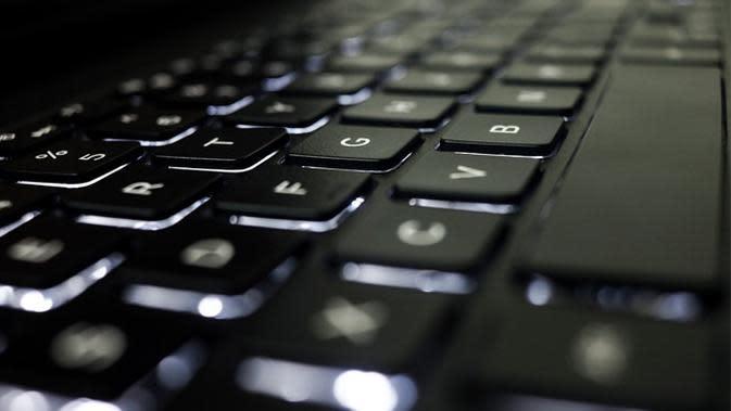 Ilustrasi keyboard (pixabay.com)