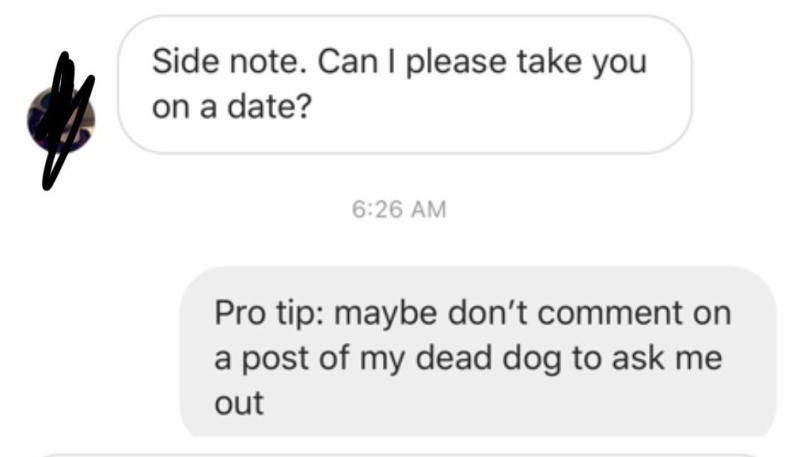 Screenshot posted to reddit of man asking woman out after her dog died