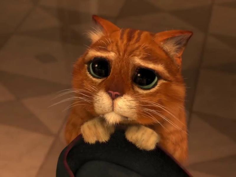 《史瑞克2》鞋貓劍客