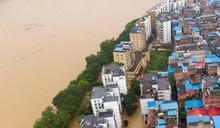 高築牆廣積糧 中國能度過糧食危機嗎?