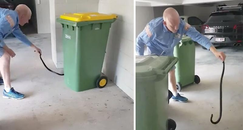 Two stills from a video showing Sunshine Coast Snake Catchers 24/7's Stuart McKenzie wrangling a snake at a Sunshine Beach home.