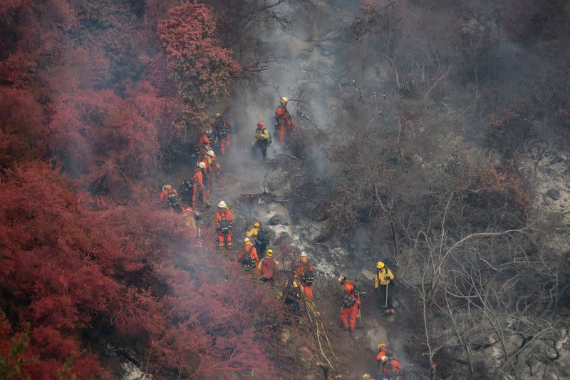 Climate change, COVID-19 stoke wildfire's economic risk, Fed says