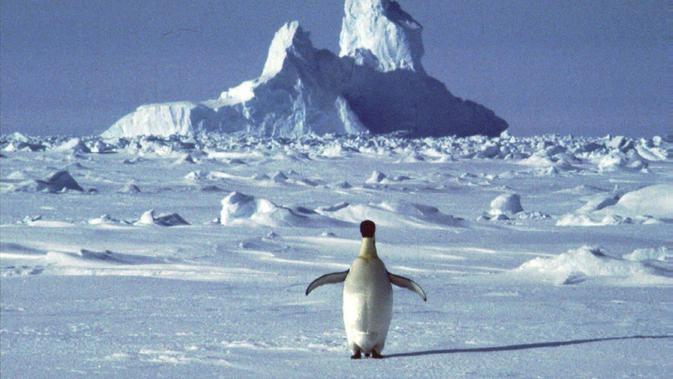 Ilustrasi Pemandangan Antartika. (Liputan6/AP)