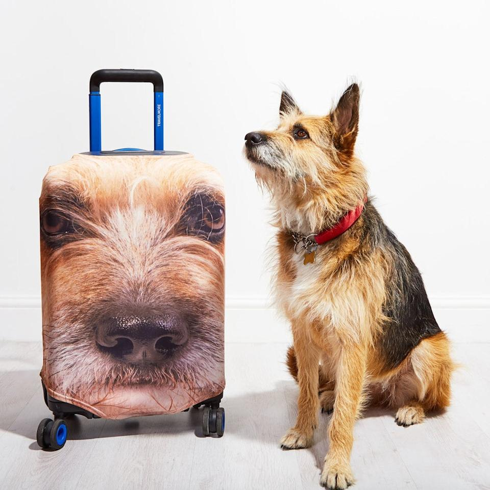 This Company Puts Your Pet's Face on Your Suitcase, and OMG