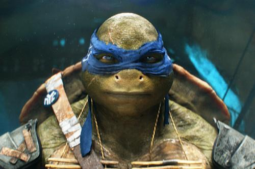 'Teenage Mutant Ninja Turtles' Review: Michael Bay's Reboot an Empty Shell