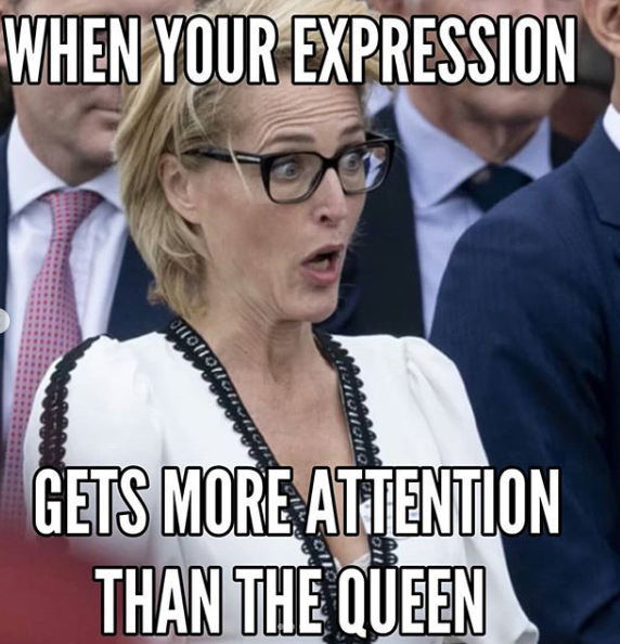 A meme poking fun at actor Gillian Anderson's reaction to the Queen being hit in the face by a scarf.