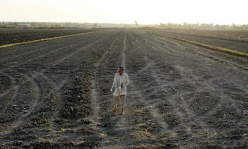An Iraqi man stands on a dry field in an area affected by drought in the Mishkhab region, central Iraq, some 25 kilometres from Najaf, on July 2, 2018