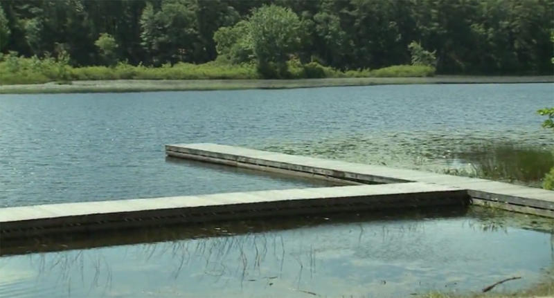 NH woman accused of pushing Golden Retriever into lake, watching it drown