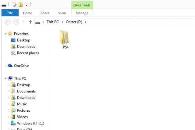 PS4 folder