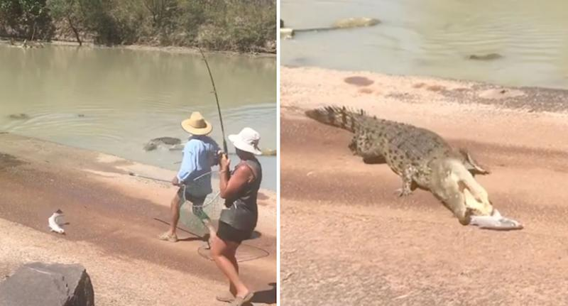 Daring fishermen shown having a barramundi snatched by crocodile in the Northern Territory.