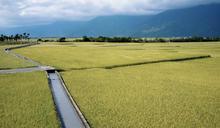 政府接管農田水利會,是利是弊?