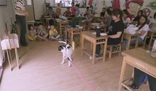創紀錄片集資冠軍 《十二夜2》給狗狗帶來暖心正能量