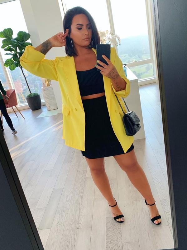Demi Lovato (Instagram/ddlovato)