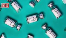 覺得莫德納更時髦更酷?專家教你擺脫「倖存者偏差」等三大疫苗迷思