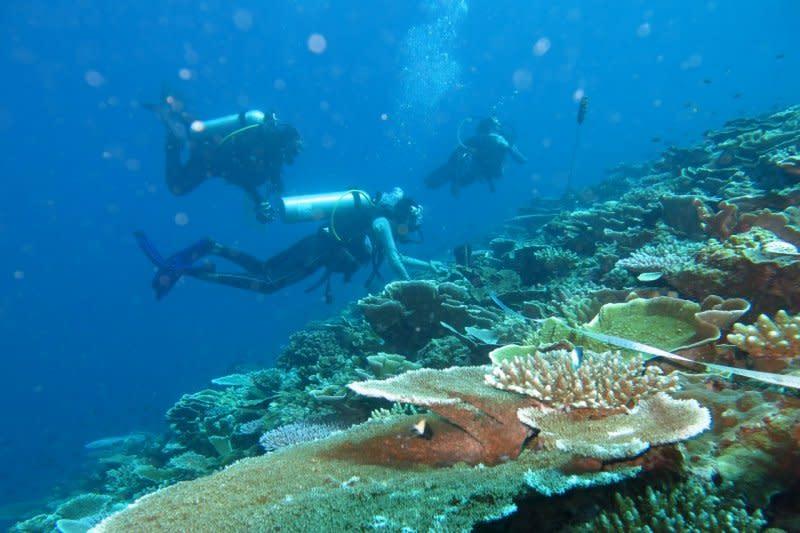 Terumbu karang untuk laut keberlanjutan dan ekonomi pesisir